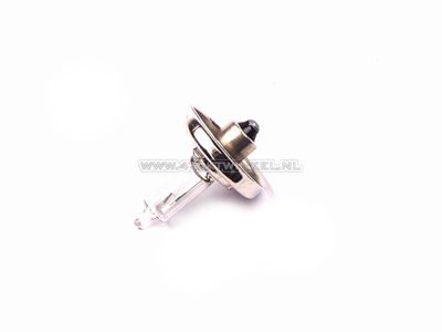 Scheinwerfer Lampe P26S, 12 Volt, 15 Watt, zB CB50, CY50, Halogen